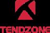 Компания Tendzone (видеоконференция)